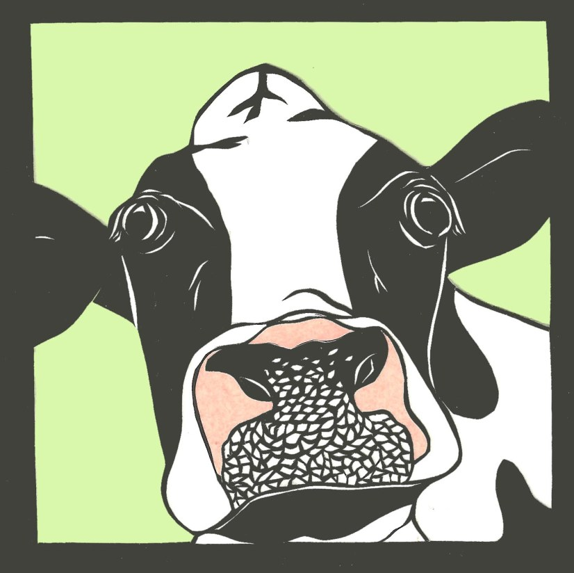 """Cow / 2011 / 5""""x5"""" / Sold."""