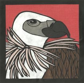 "Vulture / 2013 / 5""x5"""